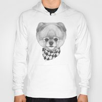 pomeranian Hoodies featuring Hand drawn portrait of  Pomeranian with scarf. by Victoria Novak