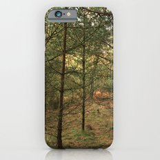 Woods of Memory Slim Case iPhone 6s