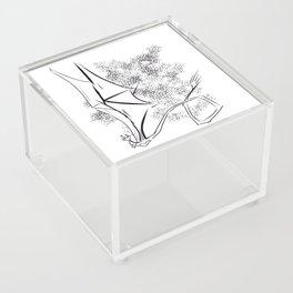 The Happy Dragon Acrylic Box