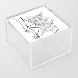 The Happy Dragon Acrylic Box