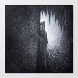 """Lucas Allen Cook """"Dungeon Dweller"""" Canvas Print"""