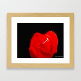 Red Red  Framed Art Print