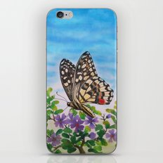 Chequered swallowtail  iPhone & iPod Skin