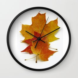 Orange Leaves Fine Art Print:  Nature Study Photograph of Autumn Maple Leaves Wall Clock