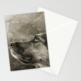 Black and White Loyal Dog Stationery Cards