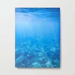 Under the Sea Metal Print