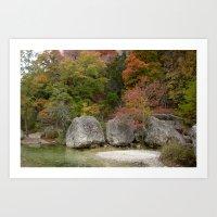 Lost Maples Art Print