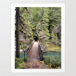 Brice Creek, trail, hiking, Oregon, bridge Art Print