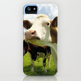 Four chatting cows iPhone Case