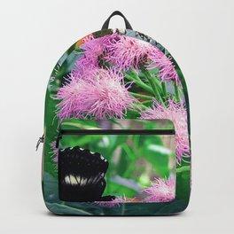 Feeding Time Backpack