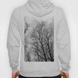 Creepy black and white trees Hoody