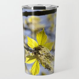 beautiful flowering maple Travel Mug