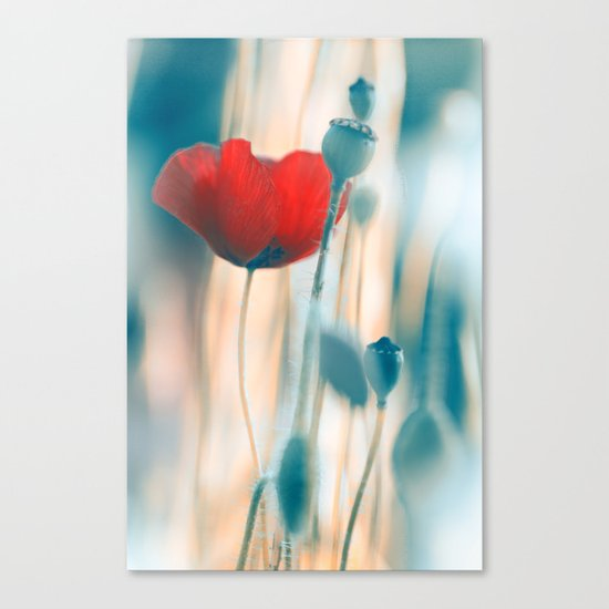 Poppies(radiance). Canvas Print