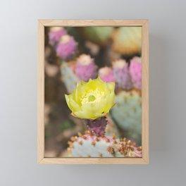 Opuntia Cactus Framed Mini Art Print