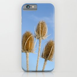 Teasels iPhone Case