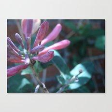 Flowers #12 Canvas Print