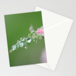 Drops of Life Stationery Cards