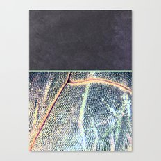 concrete.dragOnfly Canvas Print