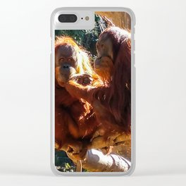 Orangutans at Feeding Clear iPhone Case