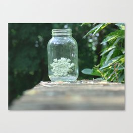 Queen Anne's Lace/Jar w/ bokeh Canvas Print