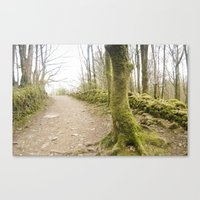 moss Canvas Prints featuring Moss by TomP