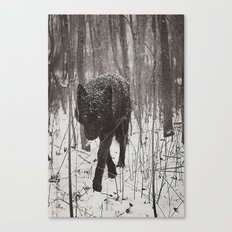 Snow Wolf Canvas Print