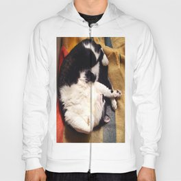 Cat Belly Hoody