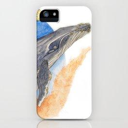 Megaptera novaeangliae iPhone Case