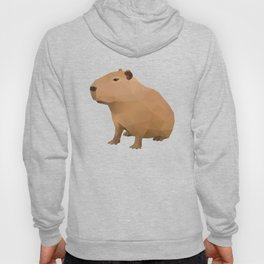 Capybara Polygon Art Hoody