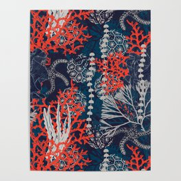 Corals and Starfish Poster