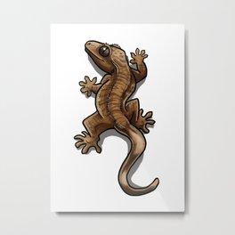 Climbing Crestie (tiger) Metal Print