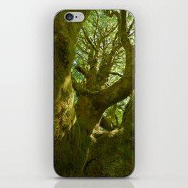A Saturation of Life iPhone Skin