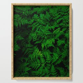Deep Forest Ferns Serving Tray