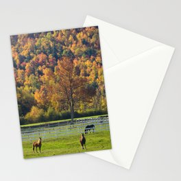 Spectacular fall color Stationery Cards