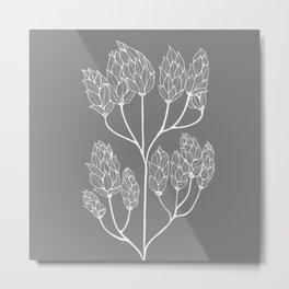 Leaf-like Sumac in Grey Metal Print