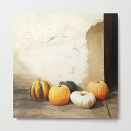 #238 #Pumpkin #Family on a #Sunny #Stoep Metal Print