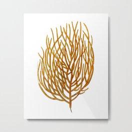 Sea Coral No.9 Antique Natural History Print. Metal Print