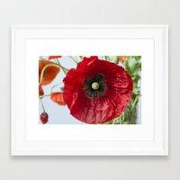 poppy Framed Art Prints featuring Poppy by Maria Heyens