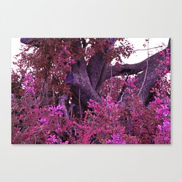 Pink red alien planet tree bright Canvas Print