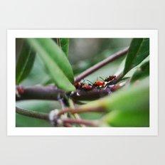 Bug Life Art Print