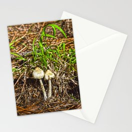 Mushrooms _ 6 Stationery Cards