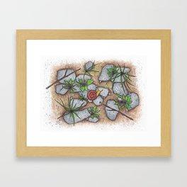 A Snail in Vermont Framed Art Print