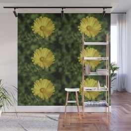 Beautiful Sunny Marigold Wall Mural