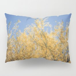 Springtime in Arizona Pillow Sham