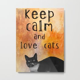 Keep calm and love cats  Metal Print