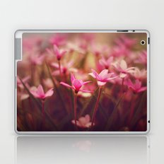 Pink prettiness Laptop & iPad Skin