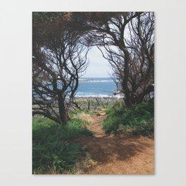 Hidden Path  Canvas Print