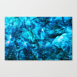 Ocean Freeze Canvas Print