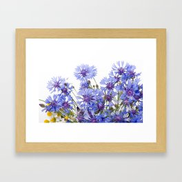 Cornflower and chamomile many flowers Framed Art Print