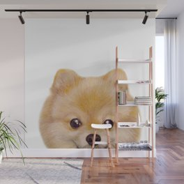 Pomeranian Dog illustration original painting print Wall Mural